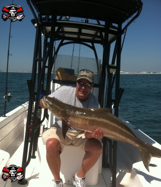 Sea dog inshore and nearshore fishing charters in orange beach for Inshore fishing orange beach al
