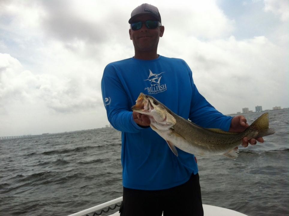 Bull dog inshore and nearshore fishing in orange beach for John s pass fishing charters