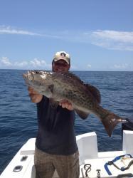 Offshore Grouper