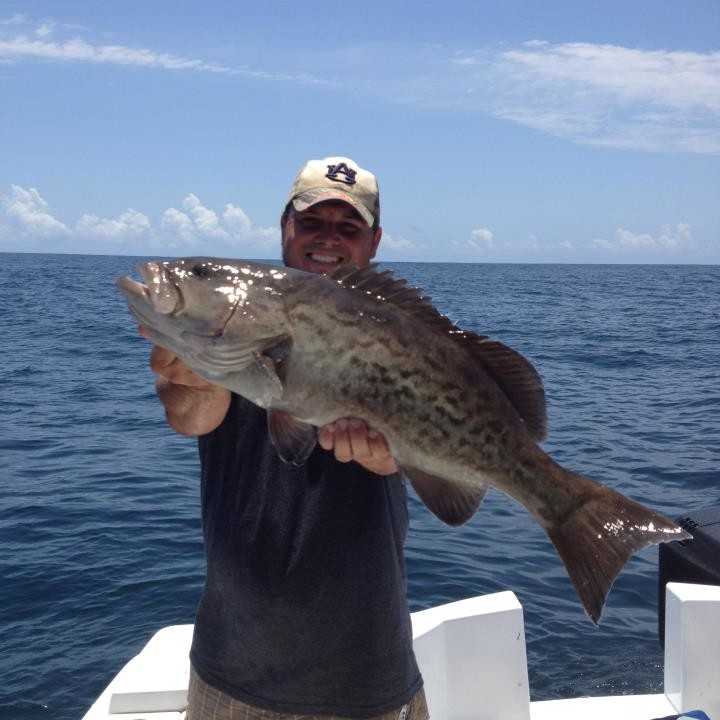 Offshore fishing Grouper