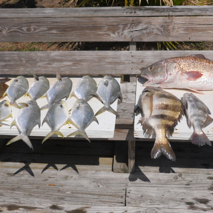 Inshore Fishing Pompano, Permit, Sheepshead, and Red Drum aka Redfish
