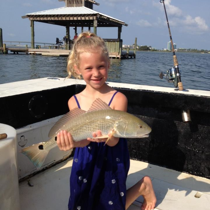 Specialty charters sunset cruise dolphin cruise for Saltwater fishing charters