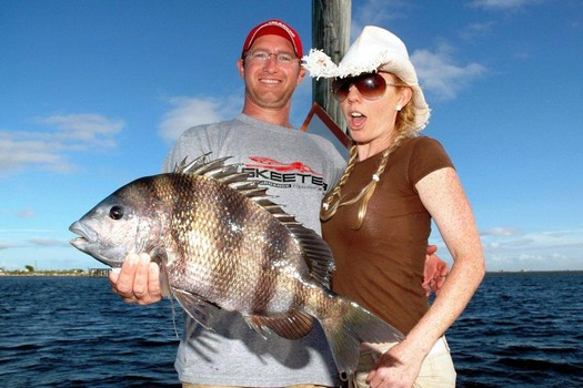 Orange Beach Fishing Charters with the best Saltwater ...Saltwater Sheepshead Fish Pictures