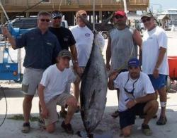 Deep Sea Fishing Tuna